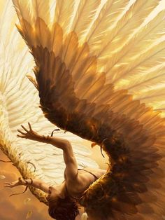 "Illustration by René Milot. if this had been just another angel illustration i would have passed, but the title is of course ""fall of icarus"". Ange Demon, Gold Aesthetic, Angel Aesthetic, Apollo Aesthetic, Angels And Demons, Fallen Angels, Fallen Angel Wings, Guardian Angels, Male Fallen Angel"