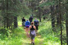 Get Me Outdoors: Cypress Hills (Elkwater, AB) Cypress Hill, Abs, Outdoors, Couple Photos, Travel, Couple Pics, 6 Pack Abs, Outdoor, Abdominal Muscles