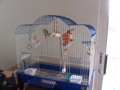 Members Cages: - Talk Parrotlets Forums