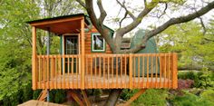 7 Tiny Tree Houses for Adults That Your Inner Child Will Love: A Tiny Tree House Loaded With  Modern Conveniences