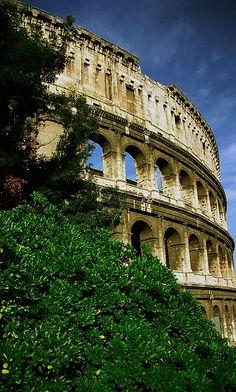 Colosseum - Rome - Italy (von David Paul Ohmer)