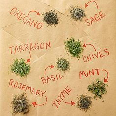 Oh no, you don't have the oregano or rosemary that dinner recipe calls for! Instead of making an emergency trip to the grocery store, use this guide to see what herbs replace other herbs for the same flavor. Use this herb guide in emergency cooking situat Spices And Herbs, Fresh Herbs, Potted Herbs, Herb Guide, Types Of Herbs, Herb Pots, Drying Herbs, Spice Mixes, Baking Tips