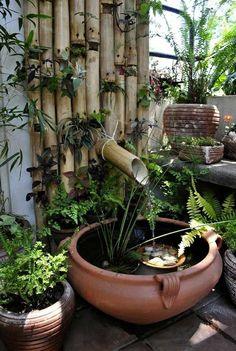 mini bassin plantes aquatiques argile bambou installation permanente