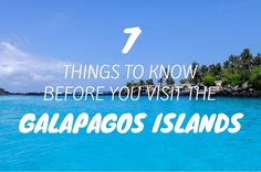 Here are 7 things to know before you visit the Galápagos Islands, one of South America's major highlights.