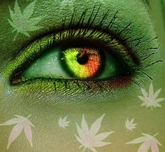 Welcome to the house of Mary Jane. Here we appreciate everything cannabis, including medicinal and recreational marijuana. Dragon's Teeth, Cannabis Cultivation, Eyes Artwork, Stoner Art, Hippie Art, Eye Art, Beautiful Eyes, Beauty Secrets, Wallpaper Backgrounds