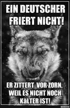 Ein Deutscher friert nicht! | Lustige Bilder, Sprüche, Witze, echt lustig