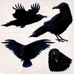 "Introducing the ""Tweevil"" the alternative to all the cutesy Twitter birds. I don't do cutesy."
