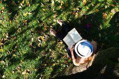 #VendrediLecture sous un arbre