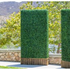Create exquisite interior displays using artificial hedges, living wall mats, and partition and privacy solutions for commercial use. Retailer of artificial plants, artificial boxwood mats and artificial boxwood hedges in San Diego California. Privacy Fence Screen, Garden Fence Panels, Fence Screening, Garden Fencing, Garden Beds, Hot Tub Privacy, Garden Privacy, Privacy Panels, Garden Arbor