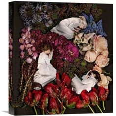 "Global Gallery 'Sleeping in Flowers' by James Hall Photographic Print on Wrapped Canvas Size: 16"" H x 14.1"" W x 1.5"" D"