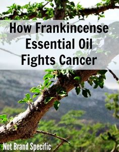 Now I know Frankincense isn't really a food, but I think this is an amazing and healthy supplement to your daily routine. You can even fight cancer with frankincense oil.
