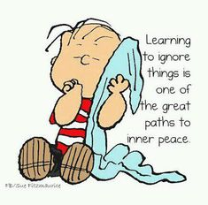 Peanuts Linus: Learning to ignore things is one of the great paths to inner peace Easier said than done!!