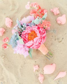 beach bouquet: mint succulents, coral charm peony, lambs ear, silver brunia, coral sweet pea.