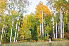 Viceroy Snowmass Autumn Aspens Wedding Photo by Cat Mayer Studio (24)