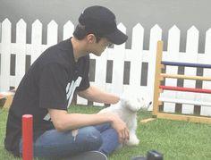 [Vyrl] EXO : THROWBACK: #SEHUN ♥ #VIVI 얼마 전 V LIVE+에서 정식으로 인사드렸던 세훈의 반려견 비비, 기억하시죠? 금