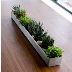 These planters just brighten up any space with their beautiful greens!