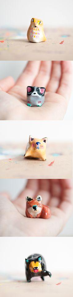 Bearcats! Click through to see all 30. // le animalé