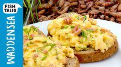 Scrambled Eggs & peeled SHRIMP | Bart's Fish Tales