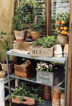 Garden For Beginners Potting Table.Garden For Beginners Potting Table