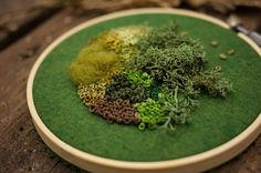 Utilizing felt, thread, and the french knot, artist Emma Mattson stitches moss-like configurations onto embroidery hoops, latching the materials onto the base like the flowerless plants which she mimics. In addition to simulating the look of the greenery, Mattson also likes to add a few pieces of fa