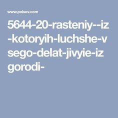 5644-20-rasteniy--iz-kotoryih-luchshe-vsego-delat-jivyie-izgorodi-