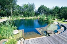 Natural pool - I would love to have this!