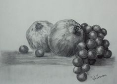 Pomegranates and grapes. Graphite/pencil drawing by Elena Whitman