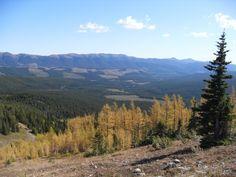 Mt Gass views