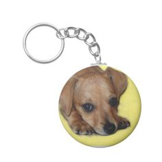 @@@Karri Best price          Chiweenie Puppy Keychain           Chiweenie Puppy Keychain today price drop and special promotion. Get The best buyShopping          Chiweenie Puppy Keychain Review on the This website by click the button below...Cleck Hot Deals >>> http://www.zazzle.com/chiweenie_puppy_keychain-146134356786433732?rf=238627982471231924&zbar=1&tc=terrest