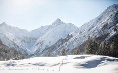 Winterwanderung ins Stillachtal bei Oberstdorf. Mit Blick auf die impossante Trettachspitze.
