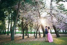 Beautiful cherry blossom pre-wedding inspiration with bride in sakura pink gown // Ghia Jun and Zee Yin's Engagement Shoot in Kyoto, Japan