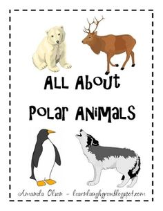 Polar Animals - Thinking Map Pack - Amanda Olson - TeachersPayTeachers.com