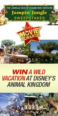 Win a Wild Vacation at Disney's Animal Kingdom