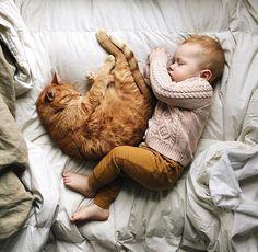 Furry snuggles