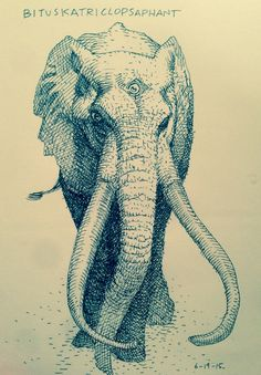 ryanottley: *  My Father's Day gift to you is a pen sketch of a Bituskatriclopsaphant! AKA, just an Elephant with an extra eye.
