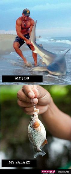 How almost all the jobs work