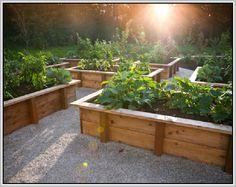 stylish raised garden beds - Google Search