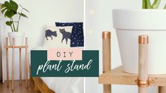 DIY Planter | DIY Copper and Wood Plant Stand | DIY Plant Stand | carafay.co.za Mosquito Larvae, Wood Plant Stand, Water Quality, Diy Planters, Houseplants, Copper, African, Youtube