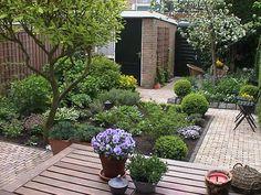Ontwerp Kleine Tuin : Beste afbeeldingen van trends kleine tuin balcony gardens