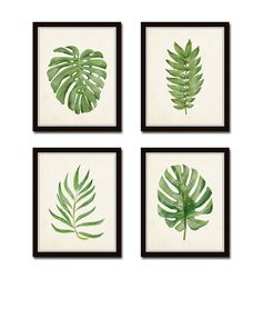 Watercolor Tropical Leaf Set No. 2 Giclee by BelleMerGraphics