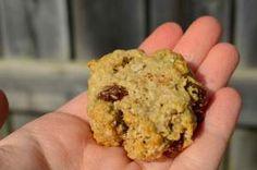 Sugar-Free, Low-fat, Low-carb Mini Oatmeal Raisin Cookies