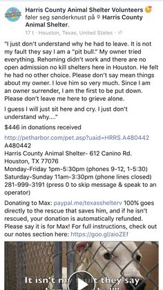 4/2/17 PLEASE HELP MAX AT HARRIS COUNTY ANIMAL SHELTER! THIS IS TOTALLY HEARTWRENCHING !! A480442 MAX /ij  https://m.facebook.com/story.php?story_fbid=480911788699733&id=388243544633225&__tn__=%2As