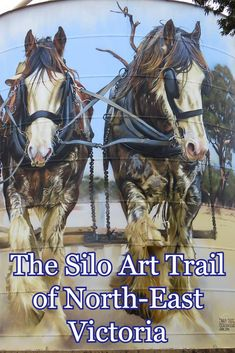 Is chasing down silo art the ultimate Australian road trip? The silo art trail of north-east Victoria is guaranteed to leave you wanting more. Australian Road Trip, Australian Art, Visit Australia, Australia Travel, Travel Around The World, Around The Worlds, Clydesdale Horses, Train Art, Water Tower