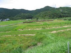 ホテルから熊野古道「大辺路」を歩くことができます。
