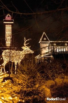 Europe is home to some of the greatest seasonal light shows in the world. Prague Christmas Market, Christmas In Europe, Holiday Lights, Christmas Lights, Christmas Christmas, Christmas Ideas, Jamberry Christmas, Copenhagen Zoo, White String Lights