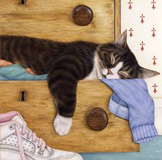 Full Drawer by Anne Mortimer