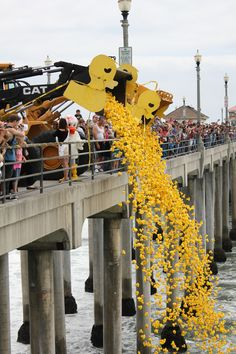 Spectators watch as thousands of yellow rubber ducks are launched into the Pacific Ocean from the Huntington Beach Pier at the Duck-A-Thon every May.