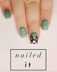 radical possibility: NAILED IT - BOSTON TERRIER NAILS