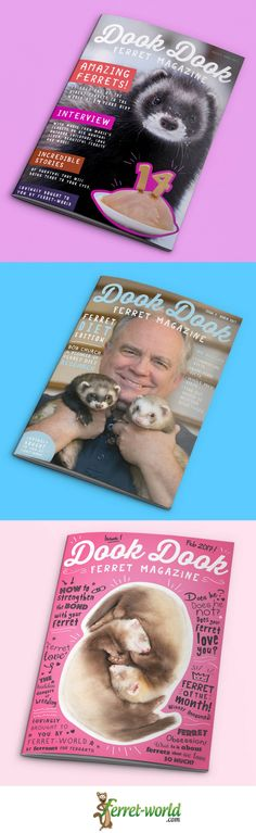 I can't believe we've already put out three magazines! Boy time fly's when you are having fun! Would you like to get monthly Dook Dook Ferret Magazine? Find out more about it and the Ferret-World Membership here https://ferret-world.mykajabi.com/p/dook-dook-ferret-magazine-march-17 #ferret #ferrets #ferretmagazine