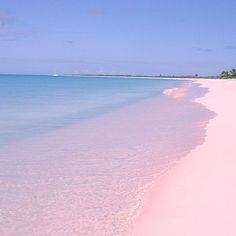 Pink sand beach in a Caribbean.